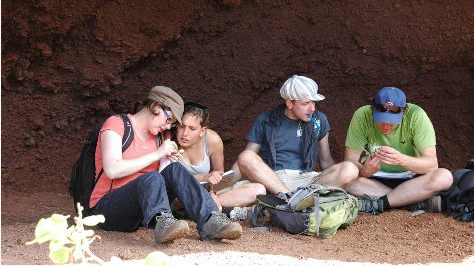 La Palma group 2012